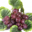 Blue ripe bunch of grapes — Stock Photo #26575655