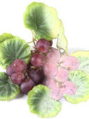 Fruit composition of colored drawing of grapes — Stock Photo