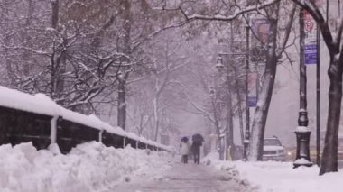 New York central park snowing — Stock Video