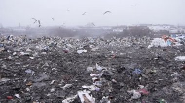 Medium shot of garbage dump rubbish dumping (static - day) — Vídeo Stock