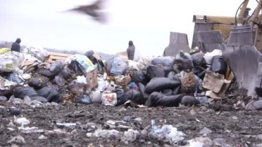 Long shot of garbage dump rubbish dumping (static - day) — Stock Video