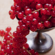 Stock Photo: Currants