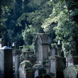 Ancient cemetery - Stock Photo