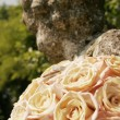 White roses on a background of an ancient monument — Stock Photo