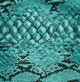 Snake skin leather — Stock Photo