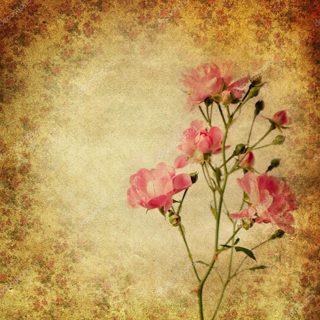 Vintage grunge background with roses — Stock Photo ...