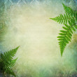 Vintage background with fern leaves — Stock Photo #27753171