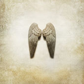 Angel Wings Background — Stock Photo