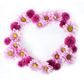 Flower Heart Background — Stock Photo