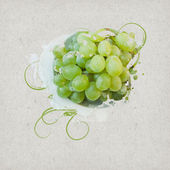 Vintage Background Design with Grapes — Stock Photo