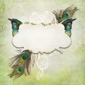 Vintage background with feathers — Stock Photo
