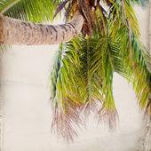 Dream Beach Grunge Background — Stock Photo