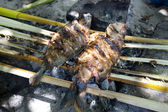 Wild BBQ on a tropical island — Stockfoto