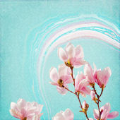 Shabby Chic Background with magnolia — ストック写真