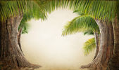 Dreamy palm tree landscape background — Stockfoto