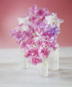 Shabby Chic Background with purple and pink flowers — Stock Photo