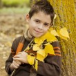 Stock Photo: Smiling boy with yellow leaves