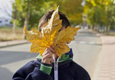Child with a big autumn leaf — Stock Photo