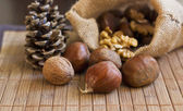 Chestnuts, nuts and cones — 图库照片