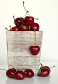 Group of delicious red cherries — Stock Photo