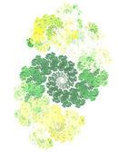 Cauliflower — Stok fotoğraf