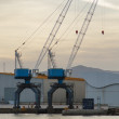 Стоковое фото: Cranes in the harbor at sunset