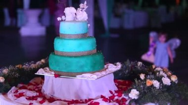 Wedding cake — Stock Video
