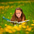 Child reading a book while lying in the grass — Stock Photo