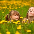 Little sister blowing dandelion seeds away. — Stock Photo #12432785