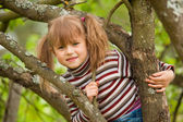 Funny lovely little girl posing sitting on a tree in the garden — Stock Photo