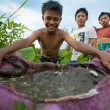 Poor children catch small fish in a ditch near a rice field — Stok fotoğraf