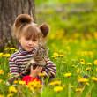bambina, giocando con un gatto nel parco — Foto Stock