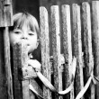 Beautiful child standing near vintage rural fence — Stock Photo #12613221