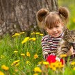 Funny lovely little girl playing with a cat in the park — Stock Photo