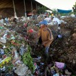 Poor from Java island working in a scavenging at the dump — ストック写真