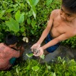 Poor kid catches small fish in a ditch near a rice field — Stock fotografie