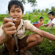 Poor kid catches small fish in a ditch near a rice field — Стоковая фотография