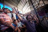 Bali dili geleneksel horoz dövüşü — Stok fotoğraf