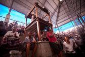 Balinese traditional cockfighting — Stock Photo