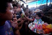 Durante la competición de las peleas de gallos tradicional balinesa — Foto de Stock