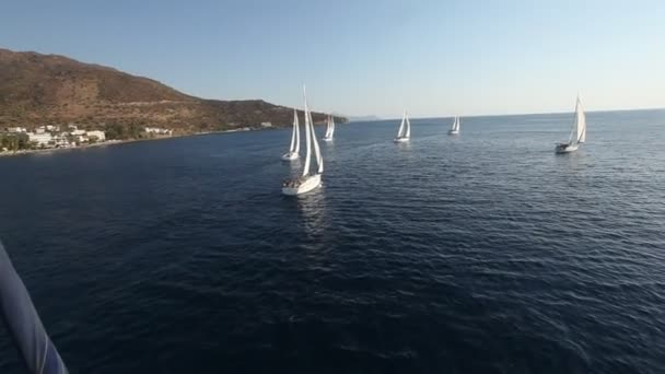 Sailing in the wind through the waves (HD) — Vidéo