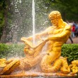 Samson - the central fountain palace and park ensemble in Peterhof, Russia. — Stock Photo