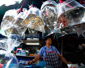 Unidentified seller shop at Chatuchak Weekend Market — Stock Photo