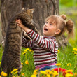 Funny lovely little girl playing with a cat — Stockfoto