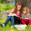Children reading book in summer park — Stock Photo #19065725