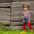 Beautiful little five-year girl posing for the camera outdoor near wooden wall — Stock Photo #19066271