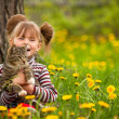 Stock Photo: Funny lovely little girl playing with cat