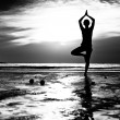 Black and white picture: Young woman practicing yoga on the beach at sunset. — Foto de Stock