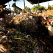 BALI, INDONESIA be- APRIL 11: Poor from Java island working in a scavenging at the dump on April 11, 2012 on Bali, Indonesia. Bali daily produced 10,000 cubic meters of waste. — Foto Stock