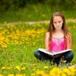 Foto Stock: Little girl sits on a grass and reads the book